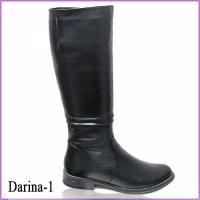 Darina-1